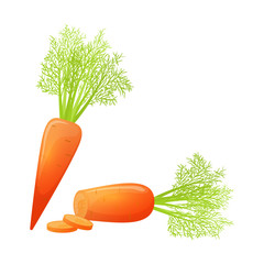 Colorful cartoon style sliced carrot. Eco organic fresh vegetable. Vector.