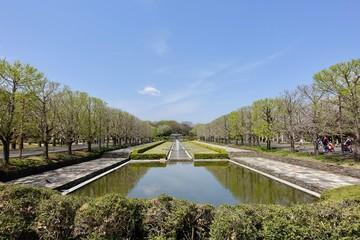 昭和記念公園の新緑