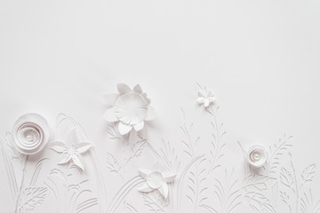 Summer flowering meadow. White flowers carved from paper on a white background