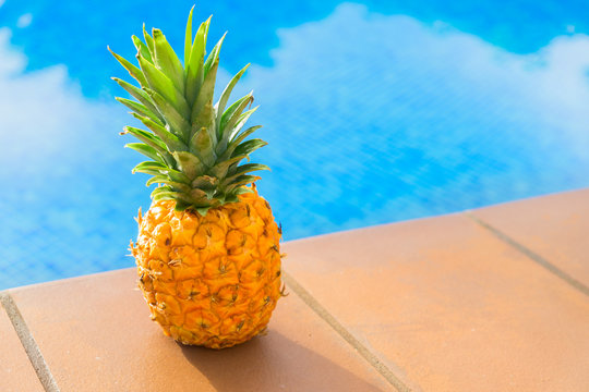 Whole pinapple near pool with blue cool water