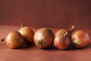 still life with onion on a brown background