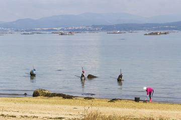 Fisherwomen capturing shellfish