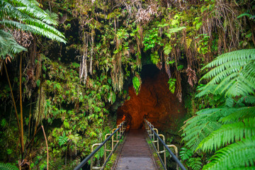 The Thurston Lava Tube in Hawaii Volcano National Park, Big Island