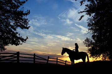 Silhouette of woman sitting on a horse