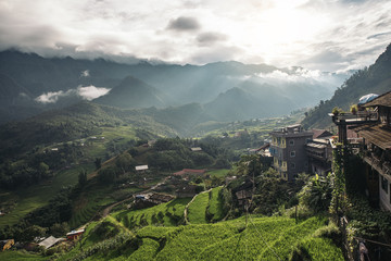 Landscape about terraced rice field in Sapa.