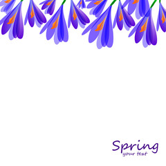 Spring card with crocuses