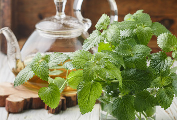 Herbal tea in a transparent teapot on the table and sprigs of fresh Melissa (lemon balm) and mint. Selective focus