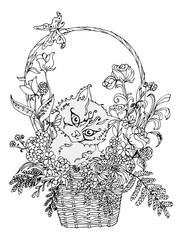 Раскраска для взрослых и детей котенок в корзине с цветами.
