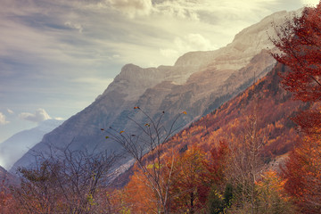 Pineta valley in autumn in the National park of Ordesa, pyrenees, Spain