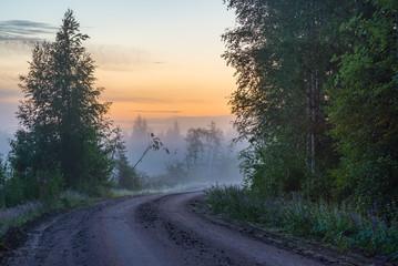 Misty countryside road in summer night light