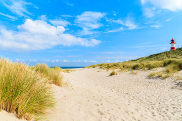 Fototapete - Grass on sand dunes at Ellenbogen beach, Sylt island, Germany