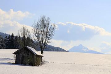 Allgäu - Nesselwang - Grünten - Schnee - Winter
