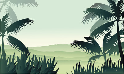 Silhouette of palm on jungle scenery
