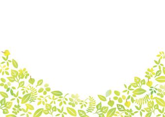 木 葉 白