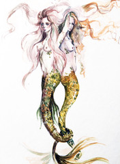 Watercolor hand paint mermaids, on white background.