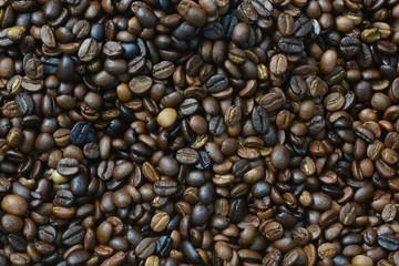 roasted arabica coffee beans