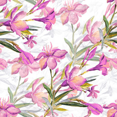 Seamless pattern bouquet of Mediterranean urban flowers on a colored background