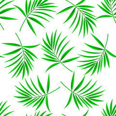 Pattern of palm leaves