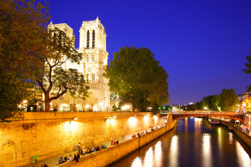Wall Mural - Notre Dame de Paris and Seine