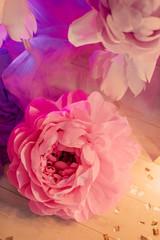 Bud to large pink rose