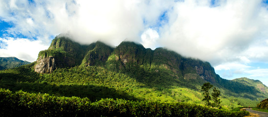 Foto auf Leinwand Hugel Seven virgin hills in Sri lankas most picturesque and one of the highest peaks in the island.