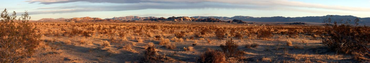 Arid landscape in the Mojave desert near Twentynine Palms, California, USA