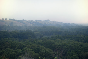 Early fog above the floodplain of the river, overgrown with forest