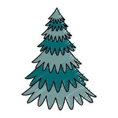 pine tree plant icon vector illustration design