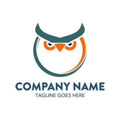 Unique And Colorful Owl Logo