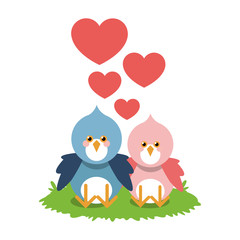 Bird cartoon in love icon. Animal cute adorable and creature theme. Isolated design. Vector illustration
