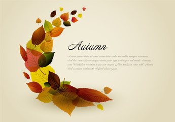 Autumn Leaves Card Layout 1