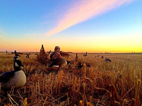 Morning Waterfowl Hunt