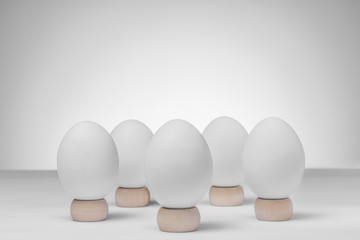 Five white chicken eggs on wooden stands on white background for copy space