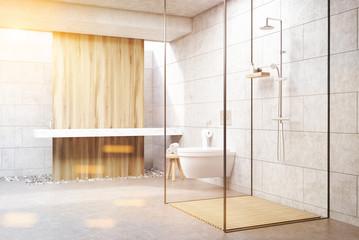 Gray shower interior, toned