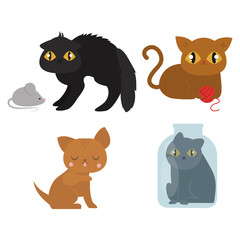 Cute cats character different pose funny animal domestic kitten vector illustration.