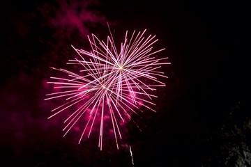 NYE Pink Fireworks