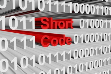 Short code as a binary code 3D illustration