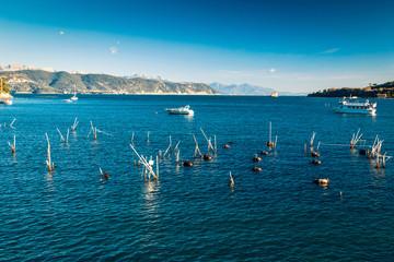 Oyster sea farm in the water near Portovenere, Liguria, Italy.