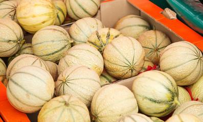 Charentais melons at farmer's market