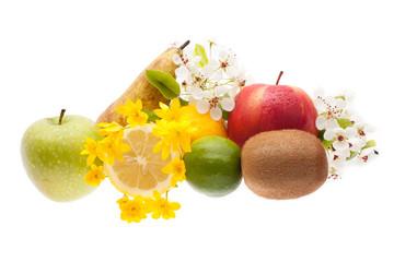 Set of fruits on the white background