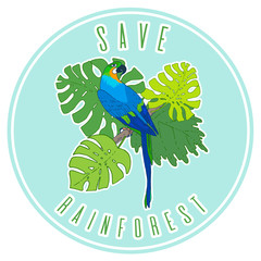 Save rainforest poster mock up design. Vector macaw parrot illustration. Animal in the wild hand drawn sketch with beautiful exotic bird sitting on branch with tropical plants and trees leaves
