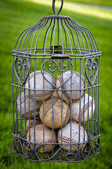 Baseballs Caged up with love