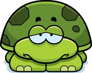 Sad Little Turtle
