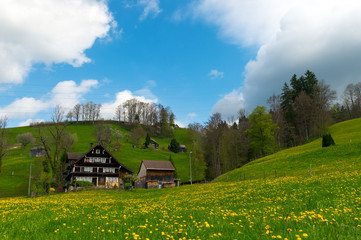 Old Swiss Farm in the Alps