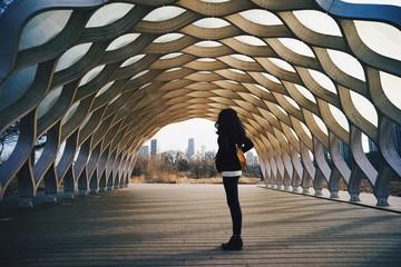 Photo sur Toile Chicago Honey comb