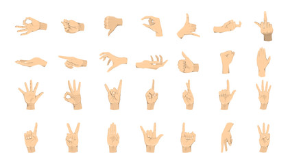 Wall Mural - Hands gestures set. Hands with signs and symbols on white background.