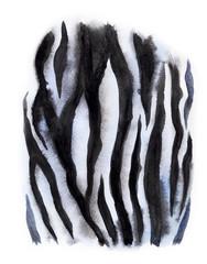 The zebra skin, watercolor drawing.