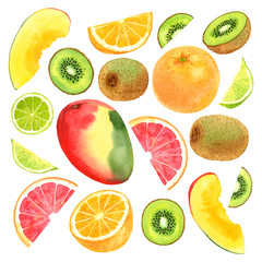 Watercolor vector fruit set with mango, kiwi, lime, grapefruit and orange