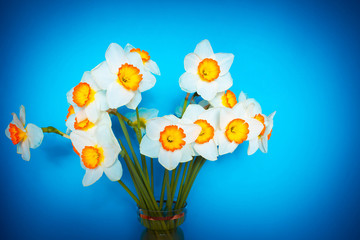 The white narcissus. Spring Flower. Bouquet of narcissus in a vase.