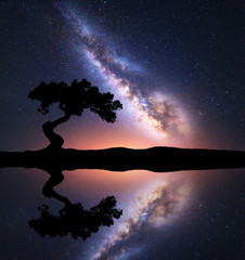 Milky Way with alone tree on the hill near the lake with sky reflection in water. Colorful night landscape with milky way, sky with stars and pond in summer. Space background. Astrophotography. Nature